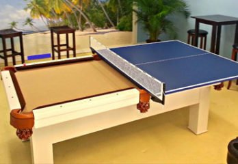 Best Table Tennis Conversion Top 2020 (Reviews and Buyer's Guide)
